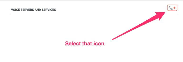 Select the icon to add a voice server